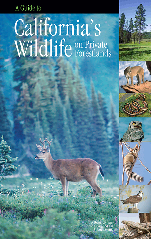 A Guide to California's Wildlife on Private Forestlands